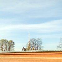 Вид на Петропавловскую крепость  осенним утром. (Санкт-Петербург) :: Светлана Калмыкова