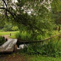 В японском саду. :: Наталья Соколова