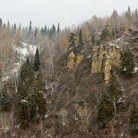 И на камнях растут деревья. :: Радмир Арсеньев