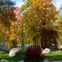Художница Осень. :: Оксана
