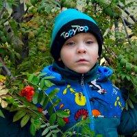 Осень... :: Александр Мартынов