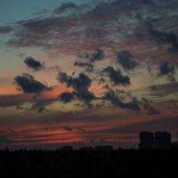 Небесные стада :: Марина Кушнарева