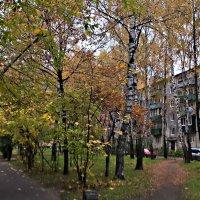 Осенний дворик :: Елена Семигина