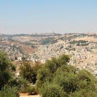 Панорама Иерусалима. :: Константин Поляков