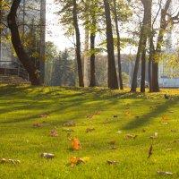 Осень на ВДНХ :: Ирина Холодная