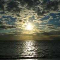 Барашковый закат :: valeriy khlopunov