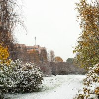 Снег в октябре 9 :: Виталий