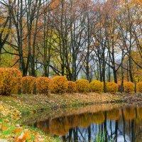 Осень в парке. :: Игорь