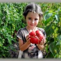 Очень ярко светит солнце, греет ласково и нежно... :: Людмила Богданова (Скачко)