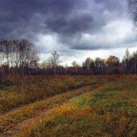 Обуяла осень золотая :: Сергей Жуков