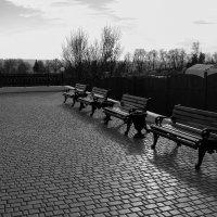 В ожидании... :: Андрей Зайцев