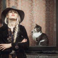 Cat :: Artur Politov