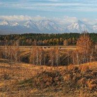 Золотая осень в Тункинской долине... :: Александр Попов