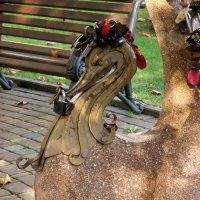 Прогулки по осеннему Сочи :: Нина Бутко