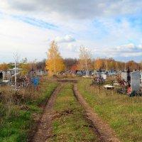 На сельском кладбище :: Андрей Заломленков