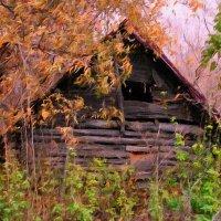 Старый сарай :: Евгений Юрков