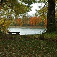 Эта теплая винная осень Не печальна она, не грустa... :: Galina Dzubina