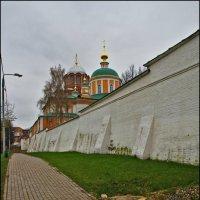у монастырских стен :: Дмитрий Анцыферов