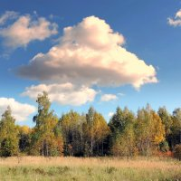 Осень. :: Hаталья Беклова