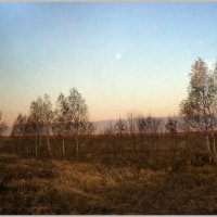 осень.березки.луна :: павел бритшев