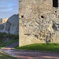 У стен Изборской крепости :: Константин