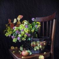 Последние цветы осени ... :: Татьяна Ким