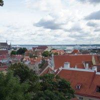 Панорама города, вид со смотровой площадки Кохтуотса :: Елена Павлова (Смолова)