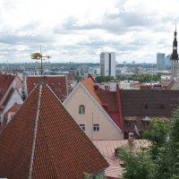 Панорама города, вид с одной из смотровых площадок :: Елена Павлова (Смолова)