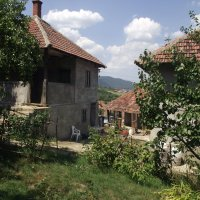 Лето в деревне :: Liubov Garkusha