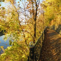 Золотая осень :: Любовь Чумак