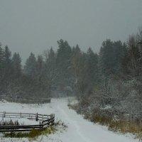 Вот и зима... :: Анатолий Антонов
