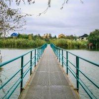 Мост :: Таня Харитонова