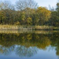Озеро :: Игорь Сикорский