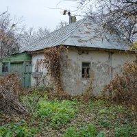 Здесь жизнь кипела... :: Сергей Тарабара