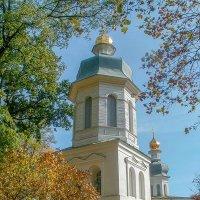 Колокольня Ильинской церкви :: Сергей Тарабара