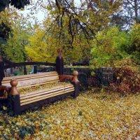 Осень.. золотая.. :: Эдвард Фогель