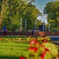 Газон в парке. :: юрий Амосов