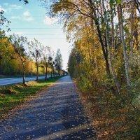 Дорога на работу.... :: Светлана Игнатьева