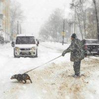 snow :: Jhon Bashilone