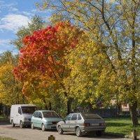 Осенняя парковка :: Анастасия Яковлева