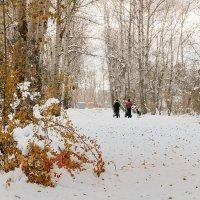 Осенний парк. :: Евгений Герасименко