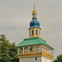 Петровская башня :: Олег Попков