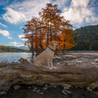 Вспышка на озере Сукко :: Алексей Яковлев