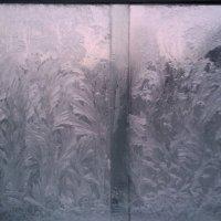 Мороз рисует узоры на стекле. :: Chrisstern Lynnik