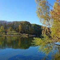 """""""Осенний мир осмысленно устроен И населен. Войди в него и будь душой спокоен..."""" :: Galina Dzubina"""