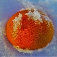 Апельсин на снегу :: Сергей Чиняев