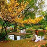 Осень в парке цветов :: Nina Yudicheva