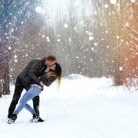 Прогулка под первым снегом :: Natalia Petrenko