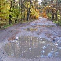 Раскрашу осень ... :: Tatiana Golubinskaia