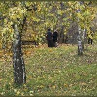В осеннем саду. :: IRINA VERSHININA